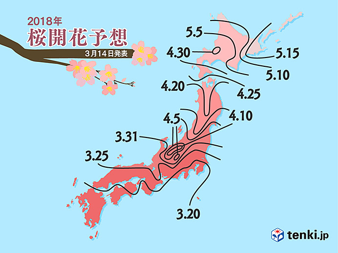 cerezos-en-flor-japon-fechas