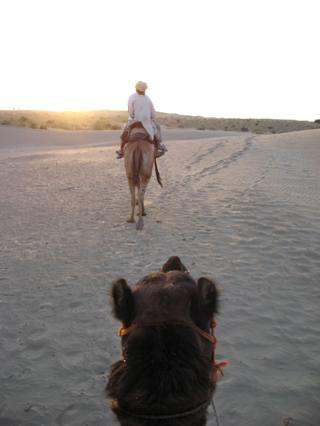 viajar-a-la-india-paseo-por-el-desierto-de-la-india