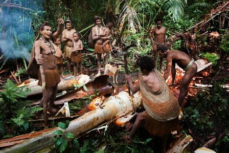 tribu korowai