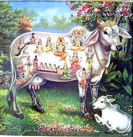 cultura-de-la-india-dios-krisna