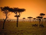 LOITA HILLS - NAIROBI