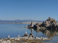 MAMMOTH LAKES / MONO LAKE / YOSEMITE N.P