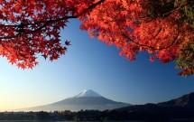 28-12: TOKYO: VISITAS