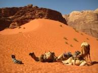 AQABA – WADI RUM: TRAVESÍA EN CAMELLOS (O TREKKING) Y ACAMPADA LIBRE
