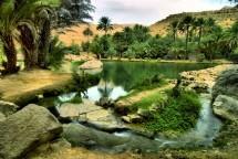 NIZWA – SINAW & IBRA – QABIL – WADI BANI KHALED – DESIERTO DE WAHIBA