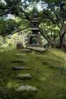 TOKYO: VISITAS – ASISTENCIA ENTRENO COMBATE SUMO