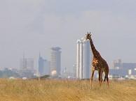 VUELO CIUDAD DE ORIGEN – NAIROBI