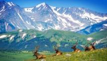 BOULDER - ROCKY MOUNTAIN NATIONAL PARK