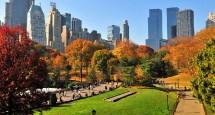 DIAS DE VISITA NUEVA YORK (del 2 al 7)