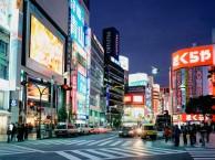 VUELO CIUDAD DE ORIGEN - TOKYO