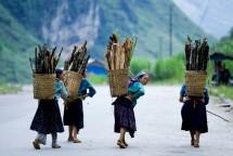 HO CHI MINH – VUELO REGRESO