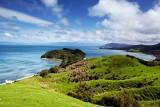 Nueva Zelanda: Kiwis y Maories - salida especial 2 octubre