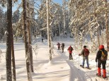 Finlandia: Fin de Año multiaventura en Laponia