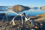 Groenlandia: lo mejor de Groenlandia - Avance verano 2018