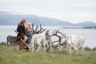 Las 3 Laponias y Cabo Norte: Noruega, Suecia y Finlandia