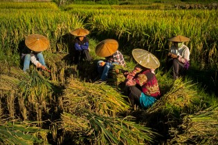 Yunnan: etnias y paisajes