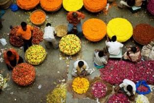 Circuito por el Sur de la India:  templos, playas y paisajes increíbles