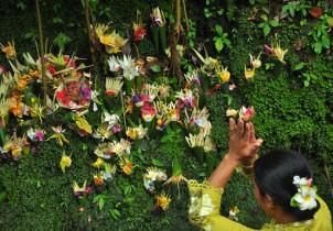 Indonesia Aventura:  Java, Sulawesi, Bali, Komodo y Lombok