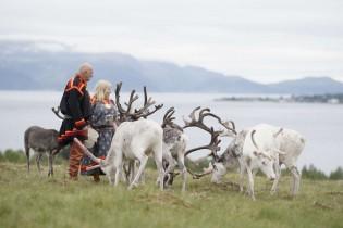 Finlandia - Fin de Año en la Laponia