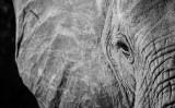 El sueño de Africa: Tanzania en grupo Insolit