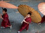 Tailandia exclusiva: esencias de loto