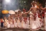 Sri Lanka: la isla de Ceylan en grupo