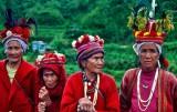 Filipinas: recorriendo la tierra de las 7000 islas