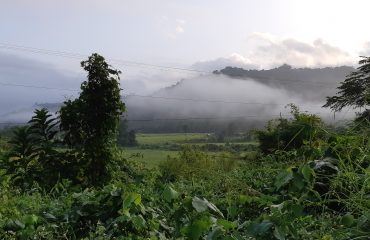 laos15 (2)