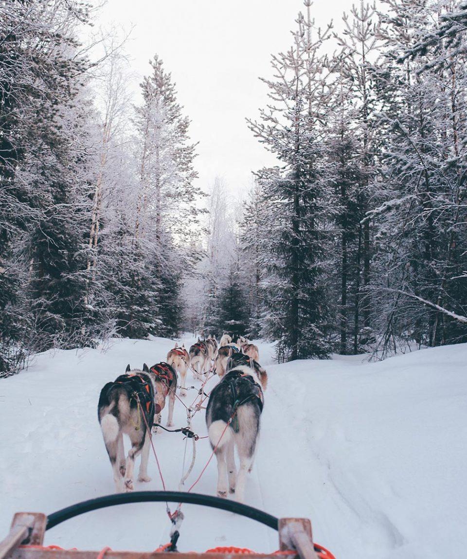 viaje-a-finlandia-trineos-de-nieve