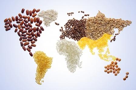 Los 7 países vegetarianos y veganos que deberías visitar | Insòlit Viatges