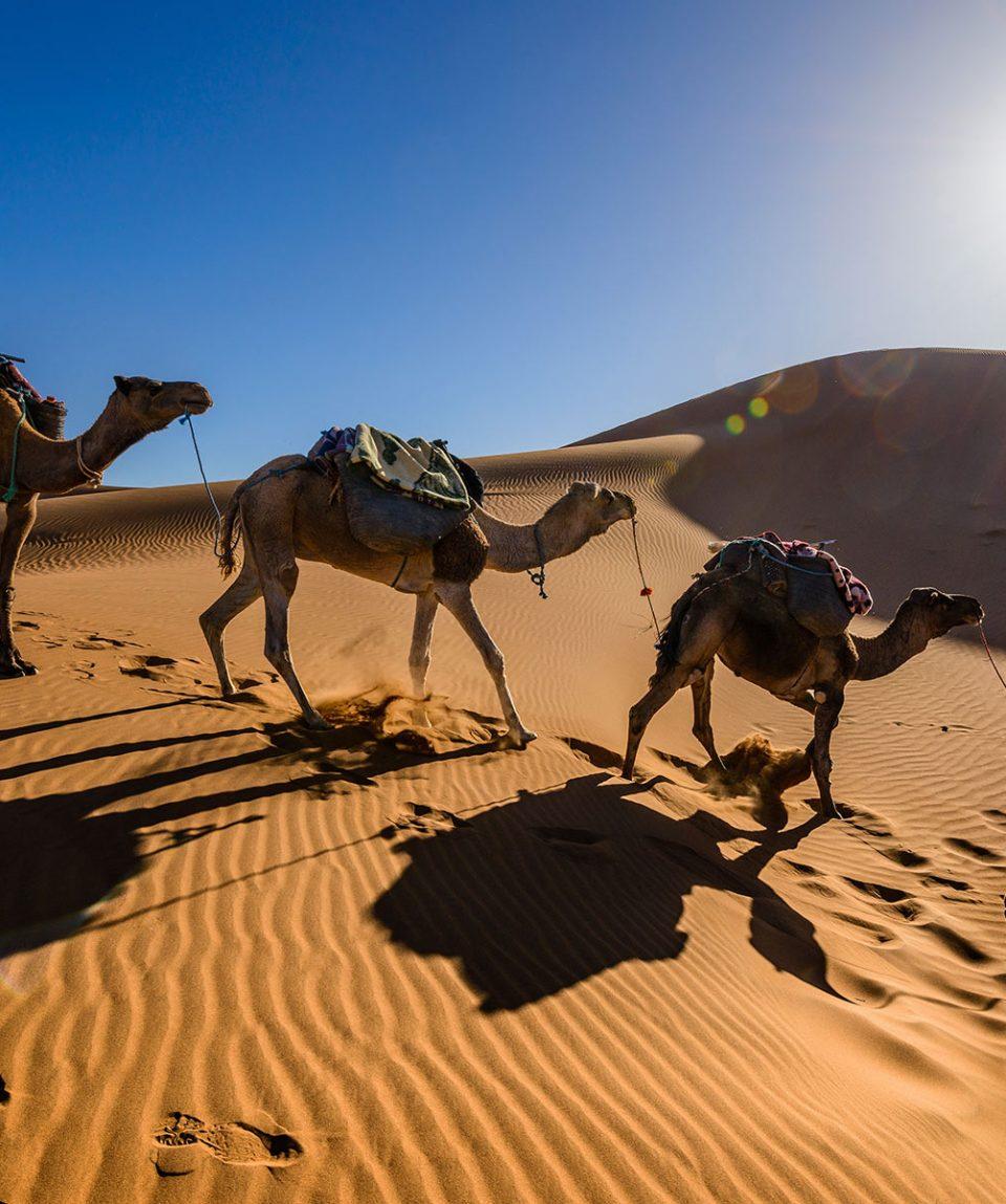 viaje-a-marruecos-grupo-reducido