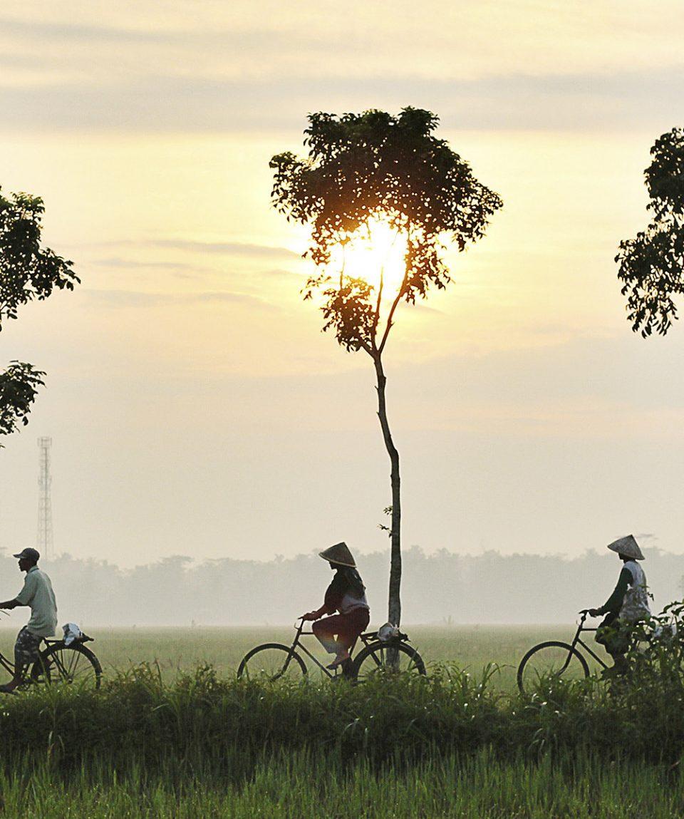 viaje-a-vietnam-remoto