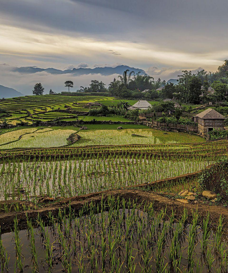 viaje-vietnam-etnico