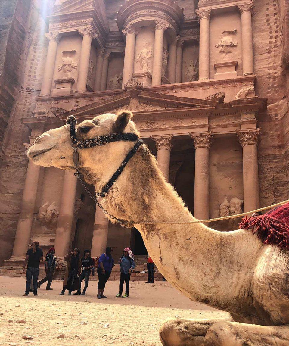 Viaje organizado a Jordania, Petra y Mar Rojo